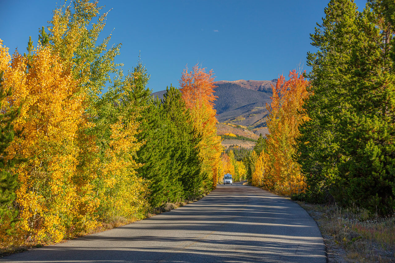 Picture of a road surrounded by yellow and orange aspens with mountains in the background.